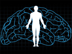 the-perception-of-the-body-by-the-brain-is-changed-by-an-anesthetic